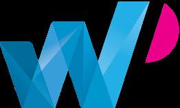 wp developer